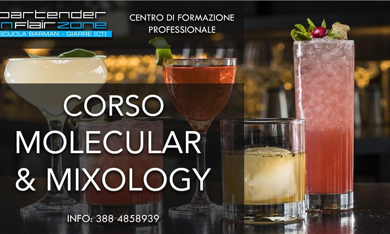 Bartender Mixology - Bartender in Flair Zone - Scuola Barman